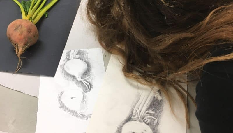 woman creating drawing of a beet